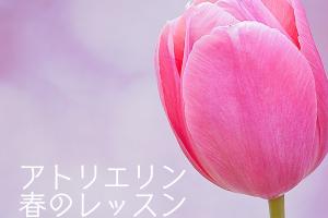 flower-821781_1280